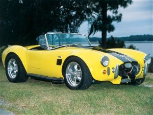 Ford Shelby Cobra Photos